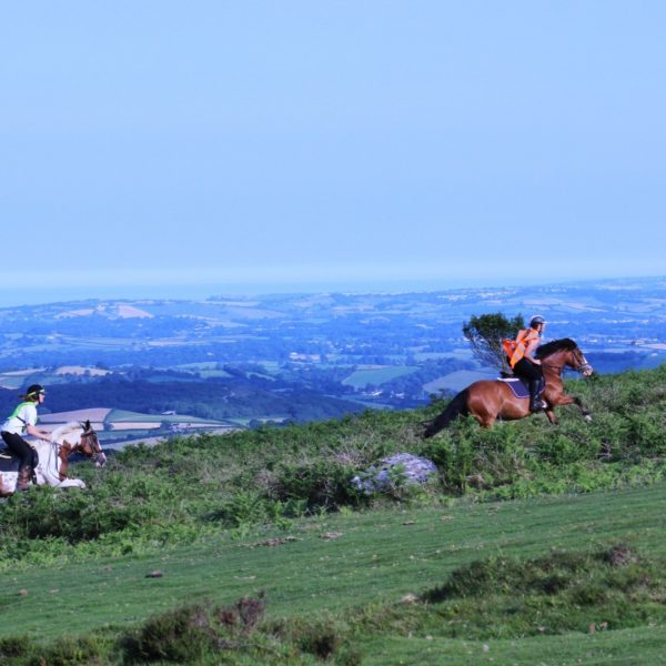 horse-riding-devon-dartmoor